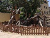 الآثار تنتهى من أعمال تطوير منطقة شجرة مريم الأثرية.. صور