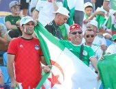 """الجزائر ضد كوت ديفوار.. جماهير مصر والخضر """" أيد واحدة"""" فى أمم أفريقيا.. صور"""