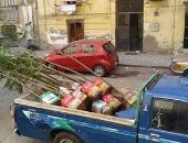 أهالى بورسعيد يطلقون مبادرة ازرع شجرة لتشجير شوارع المحافظة