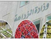 """""""الزراعة"""" توافق على تصدير 1544 طن تقاوى لـ5 دول خلال 7 أيام"""