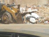 صور.. حملة نظافة مكبرة لرفع تراكمات القمامة بشوارع المحلة