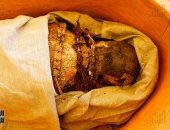 اكتشاف مقبرة تحوى مومياوات فى دهشور وافتتاح هرمى سنفرو وكا