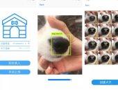 """شركة صينية ناشئة تطور تقنية لتتبع الكلاب الضائعة عبر """"بصمة الأنف"""""""