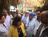 نائب وزير الزراعة تعلن استمرار أعمال تحصين الماشية وتوفير اللقاحات