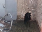 فيديو.. مياه الصرف تحاصر كشك كهرباء بالجيزة وتنذر بحدوث كارثة