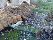 أهالى عزبة الغرباوى بمحافظة البحيرة يطالبون بتوفير مياه صالحة للرى