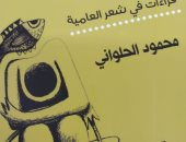 صدر حديثًا .. خيال الضرورة ومرجعياته لـ محمود الحلوانى عن هيئة الكتاب