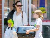 أنجلينا جولى تضم فردا جديدا لعائلتها.. تعرف عليه.. صور