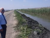"""صور.. محافظ بورسعيد يتفقد أعمال تطهير الترعة الحلوة من """"ورد النيل"""""""