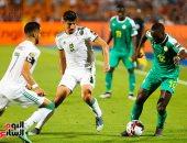 جماهير مارسيليا تهنئ الجزائر بتتويج أمم أفريقيا على طريقتها الخاصة.. صور