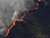 أكثر من 900 رجل إطفاء يكافحون الحرائق وسط البرتغال