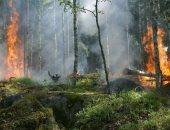 رئيس البرازيل يتهم المنظمات الأهلية بإحراق غابات الأمازون