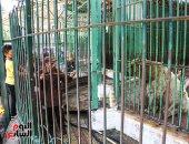 حديقة الحيوان تستقبل أسر شهداء الجيش والشرطة فى ذكرى ثورة 23 يوليو الـ67