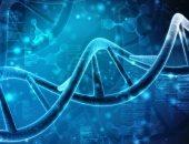 """علاج لسرطان البروستاتا بطريقة """"البحث والتدمير"""".. اعرف التفاصيل"""