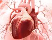 علماء: معظم مخاطر الإصابة بالنوبات القلبية والوفيات حول العالم يمكن تحسينها