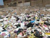 صور.. اضبط مخالفة: القمامة تحاصر شوارع طنطا وعلى الطريق السريع