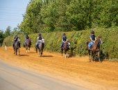 انطلاق سباق دبى الدولى للخيول العربية الأصيلة الـ38 فى نيوبرى الأحد المقبل