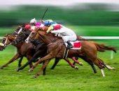 الرياض تستضيف سباق للخيول مصمم ليكون الأغلى بالعالم