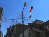 صور.. شكاوى من سقوط أسلاك الكهرباء وتحول الحدائق لمرتع للبهائم بحى غرب أسيوط