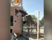 شاهد.. موقف طريف لمواطن كازاخستانى مع الزرافة