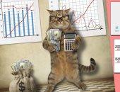 بزنس الحيوانات الأليفة.. باحثة كويتية: عالم القطط الاقتصادى يجلب الملايين