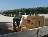صور.. تأمين شمال سيناء بالأدوية وألبان الأطفال لمدة 6 شهور