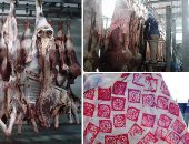 استقرار أسعار اللحوم بالأسواق.. وكيلو الكندوز يبدأ من 110 جنيها