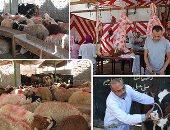موعد وقفة عرفات وأول أيام عيد الأضحى المبارك فلكيا باليوم والتاريخ