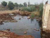 """صور.. مياه الصرف تغرق مجزر سنباط فى الغربية.. ووكيل """"الرى"""": سيتم حل المشكلة"""