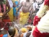 بثمرة جوز الهند.. تعرف على أغرب مهرجان دينى فى جنوب الهند.. فيديو