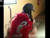 """على طريقة فيلم رصيف نمرة 5.. عصابة فى البرازيل تستخدم""""الحمام""""لنقل الرسائل"""