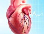 اعرف جسمك..كيف يعمل القلب وما الذى يجعله ينبض؟