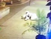 فيديو.. شاب يحتضن حبيبته لينقذها من إطلاق نار عشوائى بولاية أوهايو