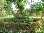 صور.. الحديقة النباتية أكبر المتنزهات بأسوان فى المواسم والأعياد