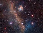"""شاهد.. صورة تلسكوبية لـ """"سديم النورس"""" الفضائى"""