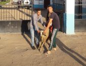 """""""فريق السعادة"""".. متطوعين يهدون خروف العيد لسكان مستعمرة الجذام"""