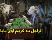 كوميكس وخروف ببلالين.. طرق احتفال المصريين بعيد الأضحى على مواقع التواصل
