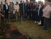صور.. محافظ الدقهلية يشهد ذبح أضاحى العيد بمجزر ميت الكرما