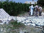صور.. إزالة التعديات على أراضى زراعية فى ثانى أيام العيد بكفر الشيخ