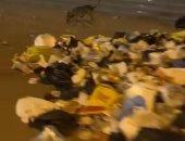 انتشار القمامة أمام سنترال الوراق يزعج أهالى المنطقة