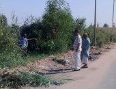 إزالة الحشائش من مداخل قرى إدفو وتحذير الأطفال من السباحة فى نافورة المعبد