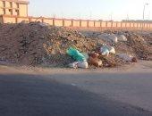 """مخلفات الأبنية والقمامة بمحيط مدرسة.. شكوى """"كمال"""" فى الحى الثامن بالعبور"""