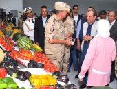 مدير شركة إسبانية دولية: مصر ستكون مصدرا دوليا لإمداد العديد من البلدان بالغذاء