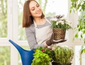 اهتمى بالنباتات المنزلية بشكل صحيح.. 5 نصائح هتسهل عليك المهمة