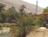 صور.. محافظ أسيوط يأمر بانتشال الماشية النافقة بقرية الهمامية الأثرية