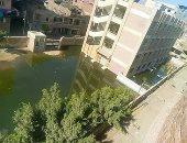 أهالى قرية البندرة بالغربية يشكون من انتشار مياه الصرف بمدرسة الخيال
