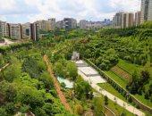 الغابات المتنقلة حل جديد لمواجهة تغير المناخ فى المدن