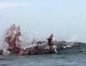 شاهد.. صراع بين سمكة قرش وفقمة فى مياه خليج كيب كود بأمريكا