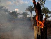 """رونالدو يحذر من حرائق غابات الأمازون عبر """"تويتر"""""""