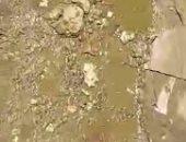 شكوى من انتشار مياه صرف مياه الصرف بشارع احمد اسماعيل فى بولاق الدكرور